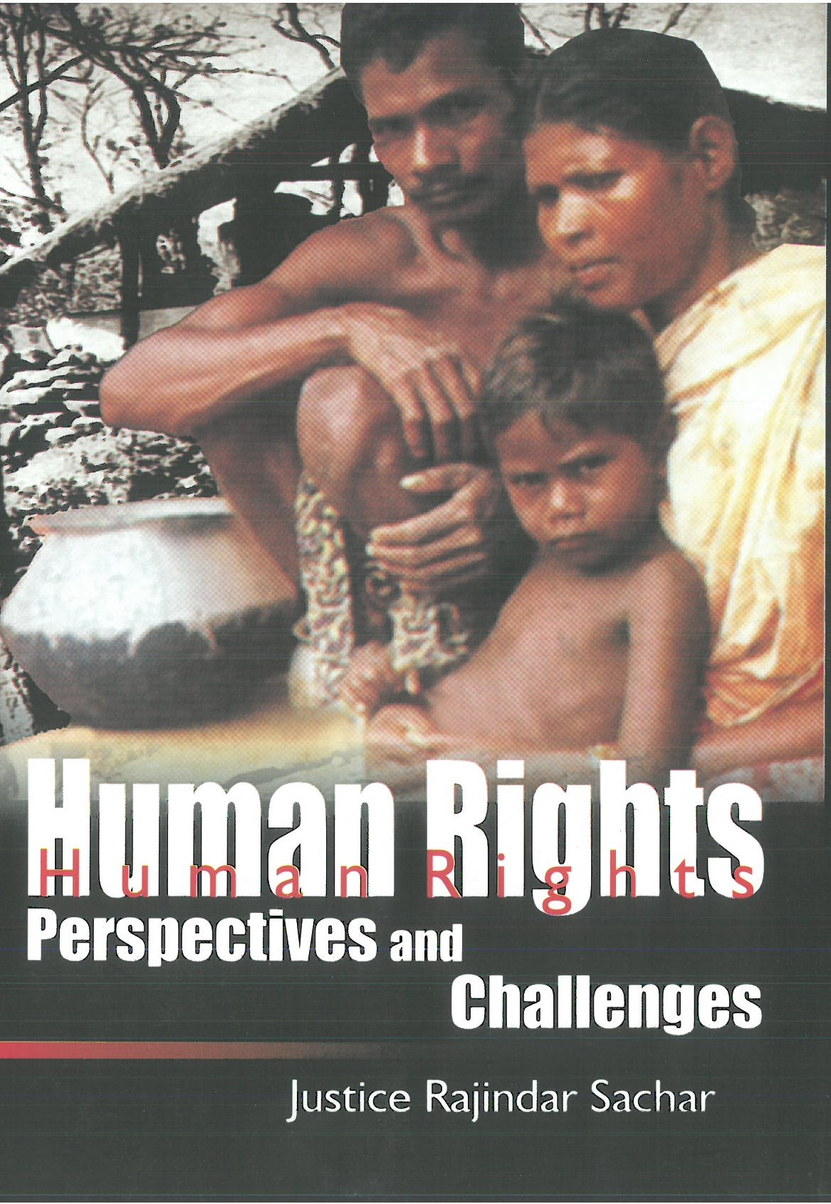 Human Rights Perspectives and Challenges